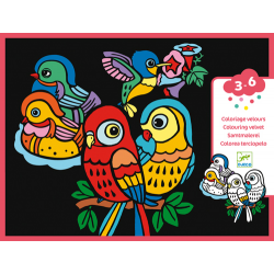 Djeco - Colouring velvet / Baby birds